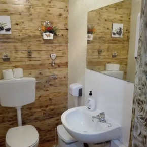 Ванна-туалет319